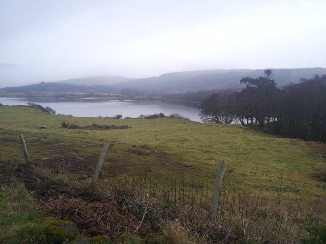 Island blog 36