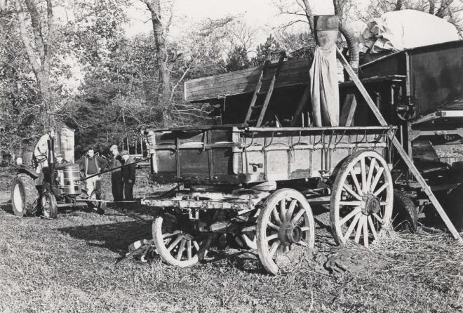 Alex on the old Field Marshall tractor with the old horseman to the right.  The farm hay wagon is in the foreground.