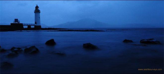 Island Blog 48